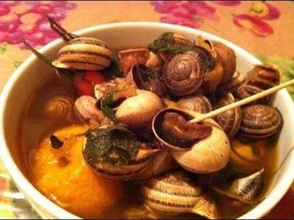 escargot un plat aimer par les marocains