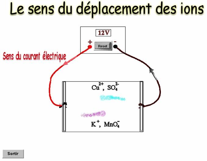 logiciel de simulation de déplacements des ions